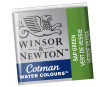 Akvarellnööp Cotman 1/2 599 sap green