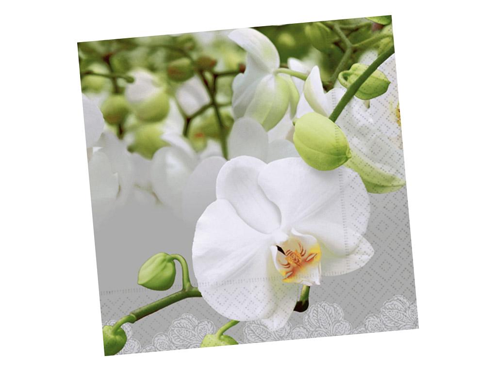 Salvrätikud 33x33cm 20tk 3 kihiline Orchid Festival