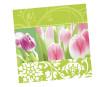 Salvrätikud 33x33cm 20tk 3 kihiline Spring Awakening