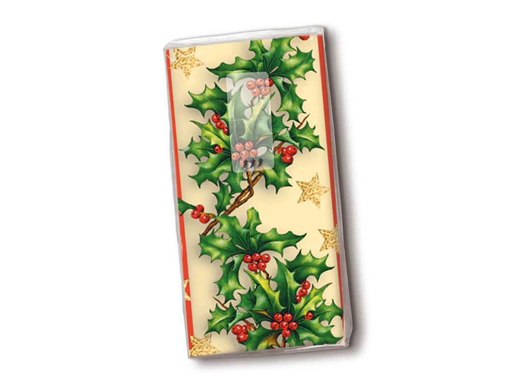 Popierinės nosinės 10vnt. 4 sluoksnių Holly Border