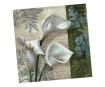 Salvrätikud 33x33cm 20tk 3 kihiline White Beauties