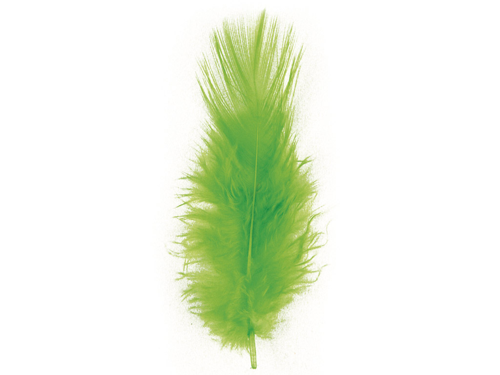 Decorative feathers Rayher Trendy 10-15cm 2g light green