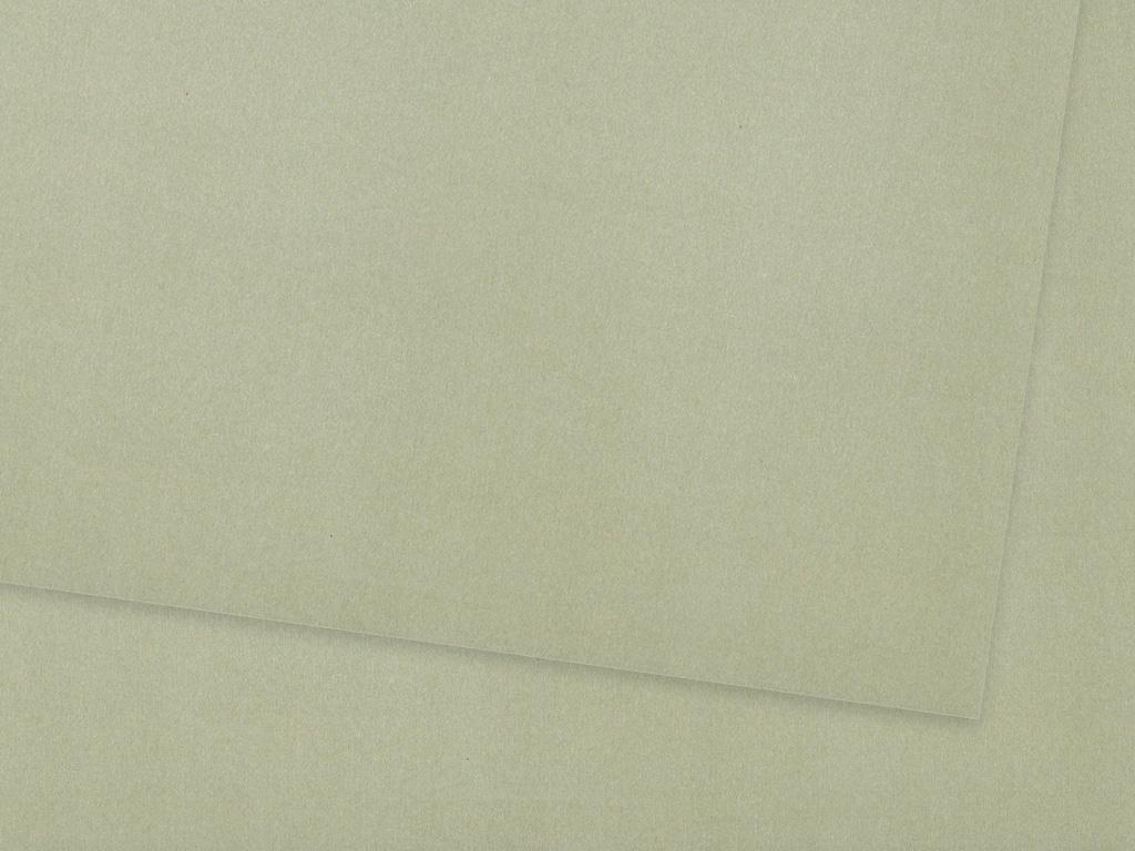 Krāsains papīrs Ursus A4/130g 88 matt silver