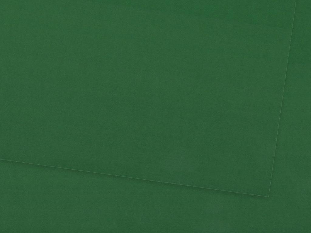 Kartons Ursus 70x100cm/300g 55 dark green