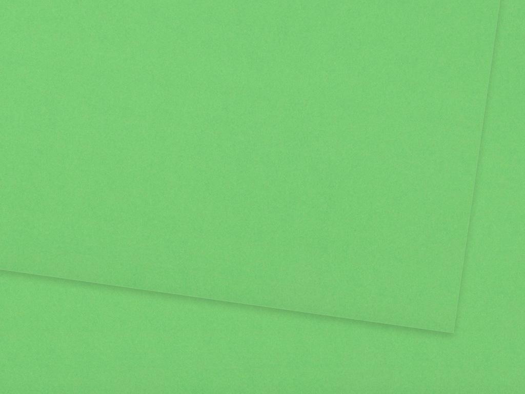 Kartons Ursus 70x100cm/300g 58 grass green
