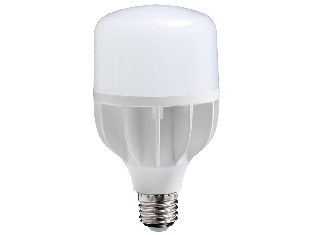 LED lemputė (dienos šviesos) Daylight 18W E27