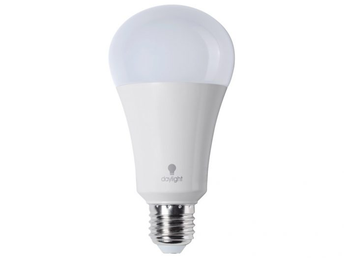 LED lemputė Daylight (dienos šviesos) E27