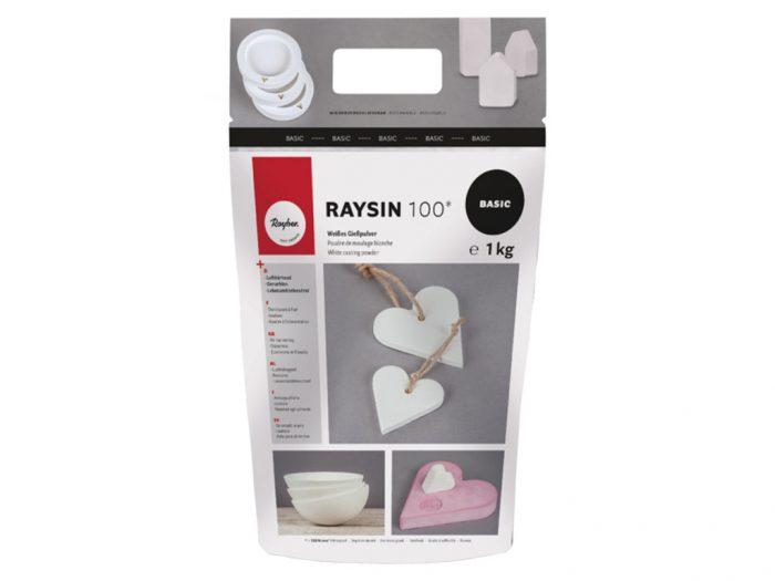 Casting powder Raysin 100 - 1/6