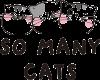 M&G So Many Cats