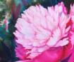 A.Laasi meistriklass: Klassikaline lillemaal – pojengi ilu